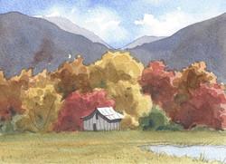 Glen Ayre Fields in Autumn
