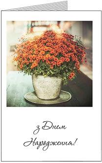 листівка з днем народження, квіти в вазоні
