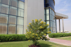 Al-Bawakir-ltd1.jpg