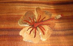 Single Hibiscus