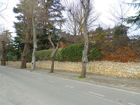 Villa Maravillas (Burgos)
