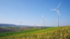 wind farm in green landscape with blue sky