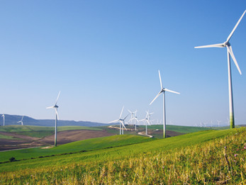 One of the largest wind parks in the region starts operation