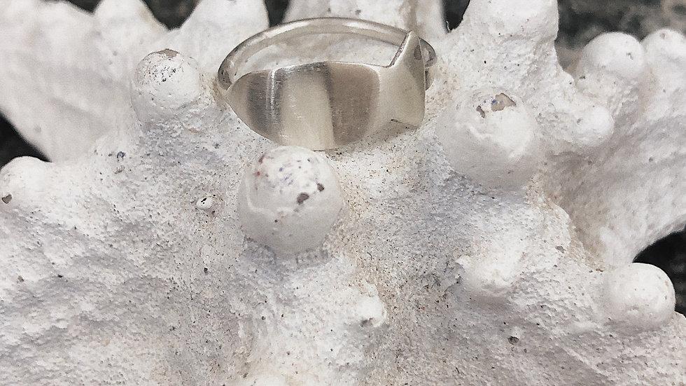 Fiso Ring
