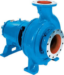 Goulds 3175 Pump