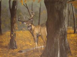 Archery Range Mural