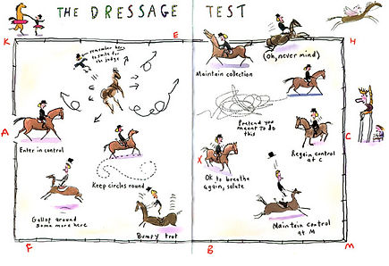 Dressage test header.jpeg