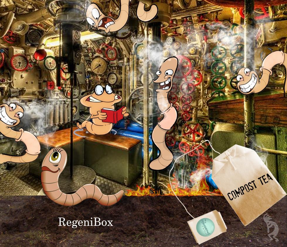 Regenibox