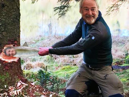 Å kappe ned store trær med en sild