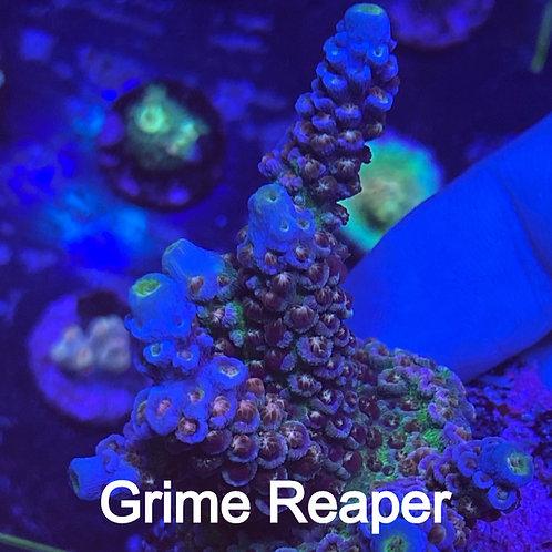 Highendsticks Grime Reaper