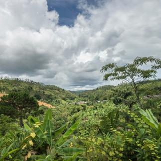 Landschaft-2.jpg