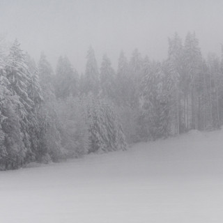 Schneeschuhlaufen-06384.jpg