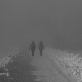 Spaziergänger-06472.jpg