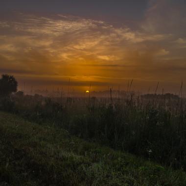 Sonnenaufgang in den Everglad