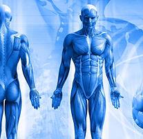 terapias-naturales-toledo-bioresonancia-