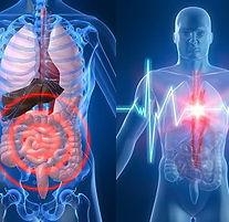 bioresonancia-nutergia-1.jpg