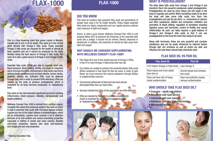 Flax brochure_ENG 2.png