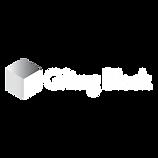 TGB White Logo (1).png