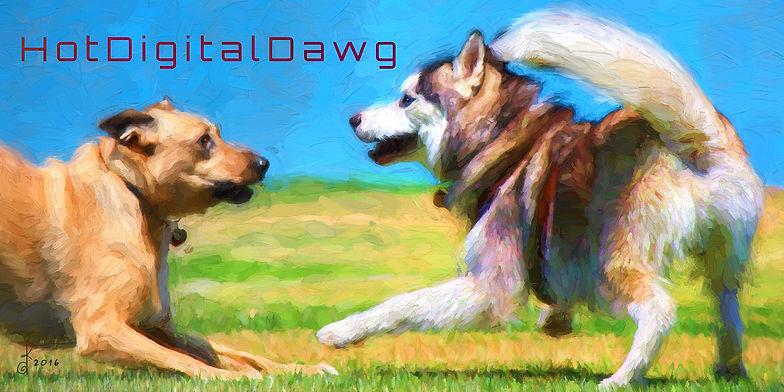 s4w-Dog-Park-.jpg