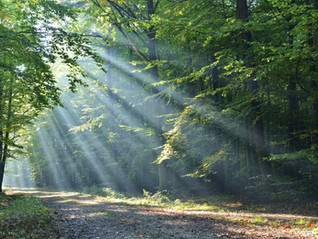 THE NATURE OF LIGHT/GOD