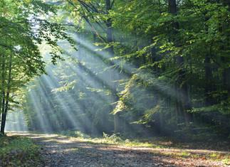 Transcending Light