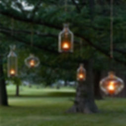 hanging tree light.jpg