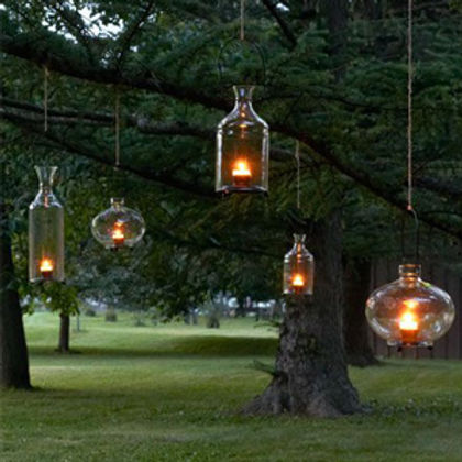 hanging tree light.jpg