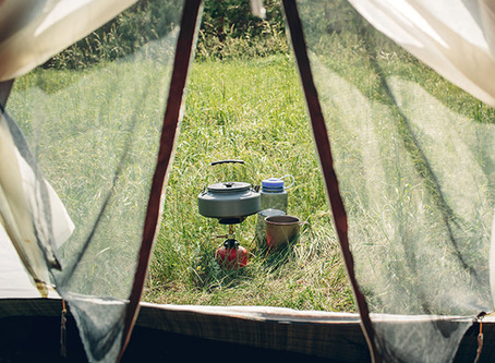 Should You Go Camping?