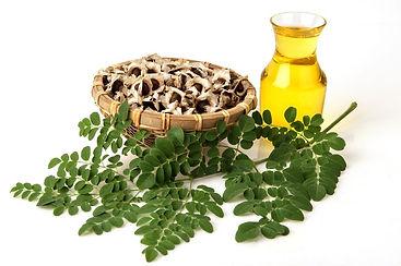 moringa oil sample.jpg