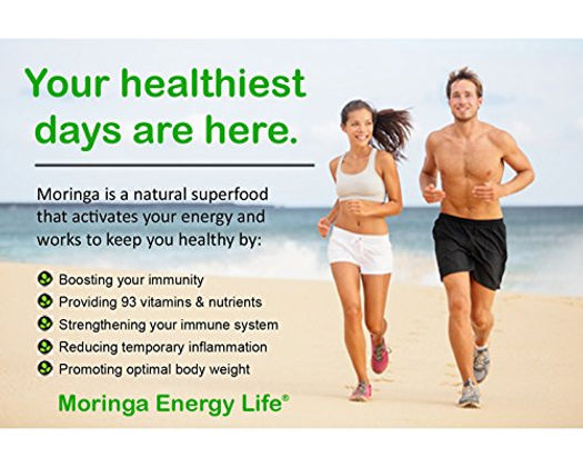 moringa energy3.jpg