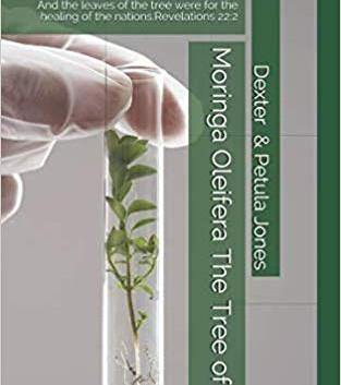 Moringa Oleifera--the tree of life.jpg