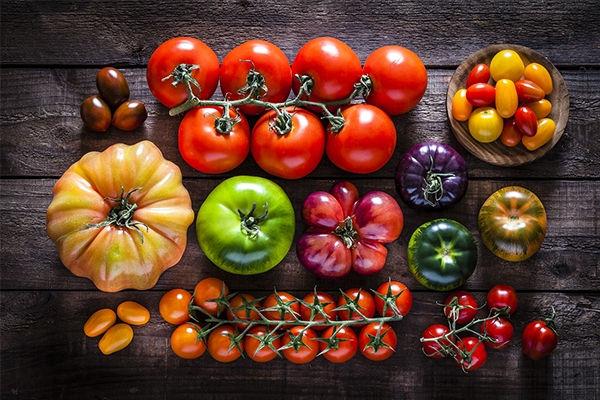 12-varietes-tomates-incontournables-orig