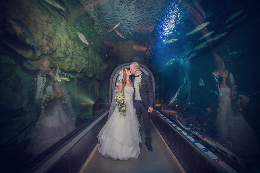 bester Hochzeitsfotograf Ulm