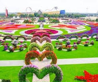 Miracle Garden.jpg