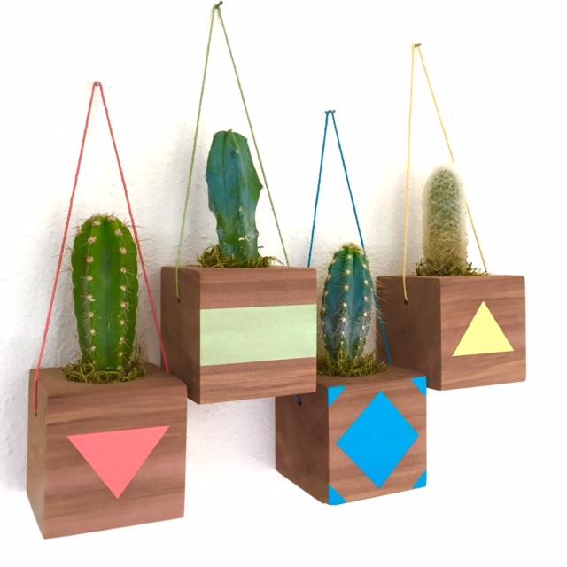 hanging cactus cubes