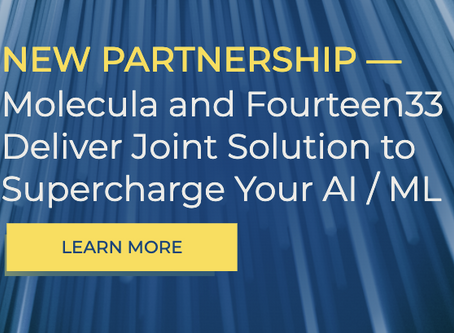 Molecula and Fourteen33 Deliver Joint Solution to Supercharge your AI / ML