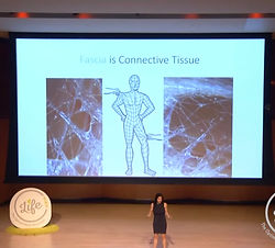 Fascia is Connective Tissue