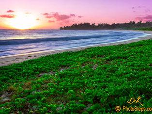 Kahuku Sunrise