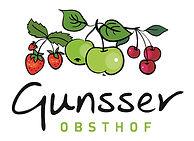 Gunsser Logo JPEG10cm 4c RZ.jpg
