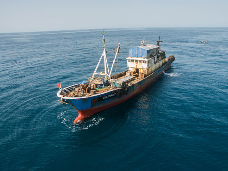 'Document Verification Manual: Vessel Identity' is published