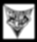dr_medics_logo.png