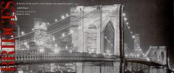 Bridge cover 2