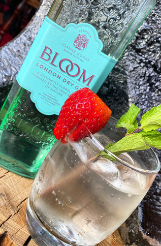 bloom gin.jpg