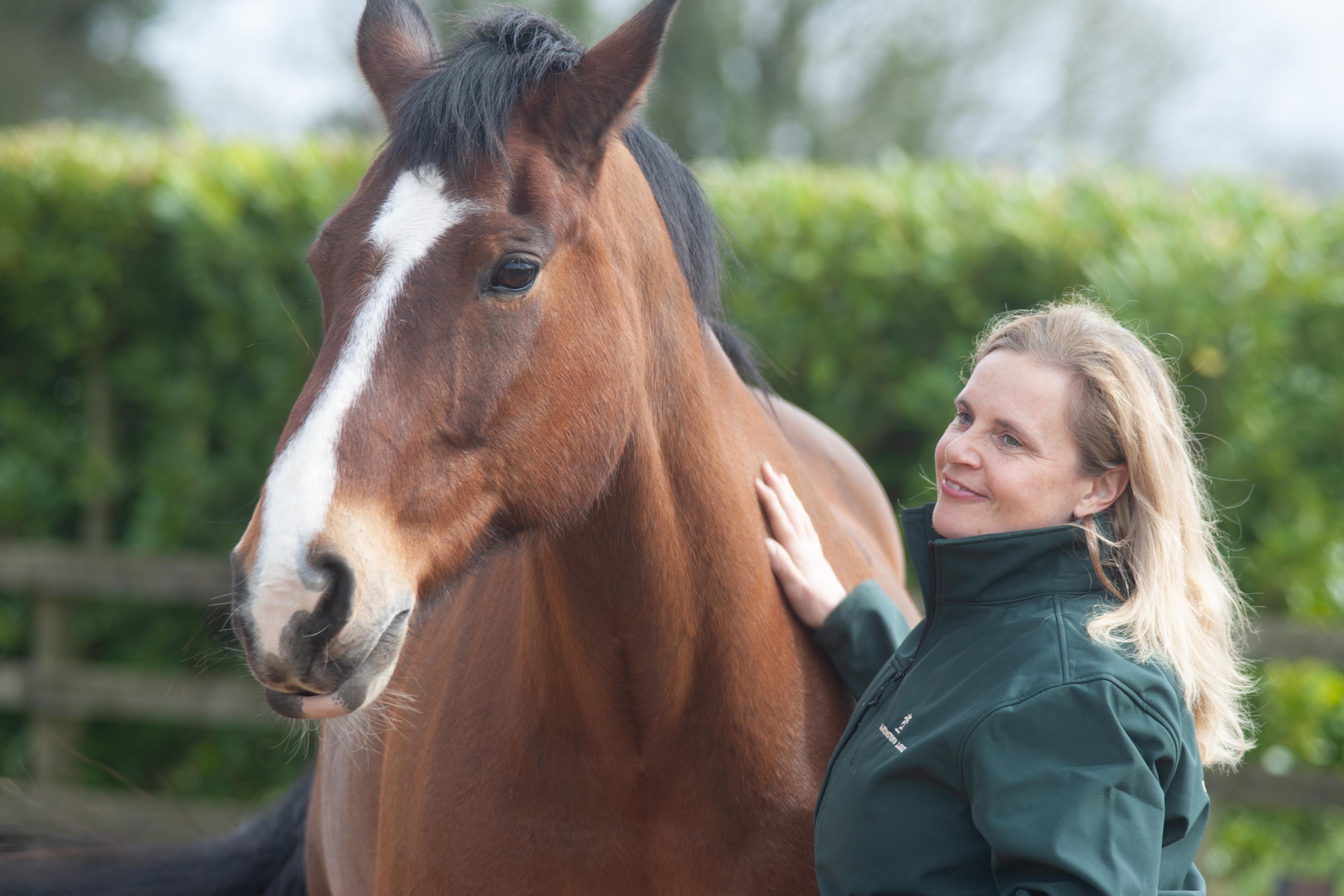 One-to-One Coaching through Horses
