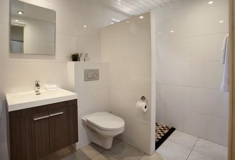 Deluxe Studio Bathroom.jpg