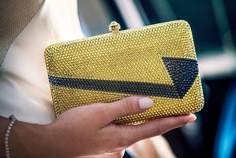 JASMINE NYE minaudieres, online designer clutches, online designer minaudieres, Designer Minaudiere, Designer clutches, Designer clutch bags, Designer evening bags