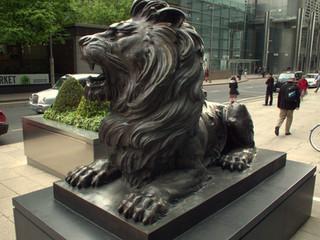 HSBC - Lions