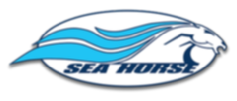 Sea Hrse Systems Logo