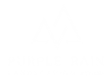 logo%20png%20w_edited.png