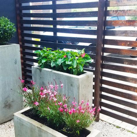 planter after 1.jpg